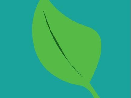 leaf graphic