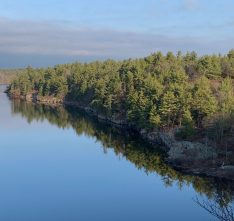 McCrae Lake Conservation Reserve