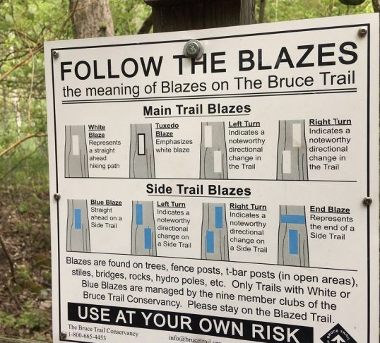 blaze sign