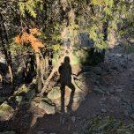 Monica's shadow on cedar